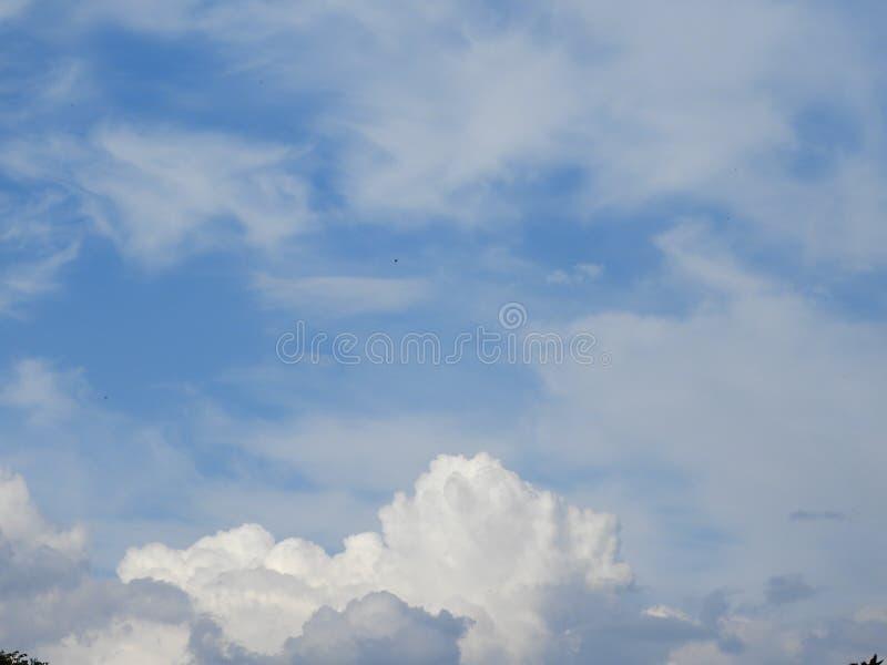 Le blanc de bleu de ciel opacifie le jour photographie stock libre de droits