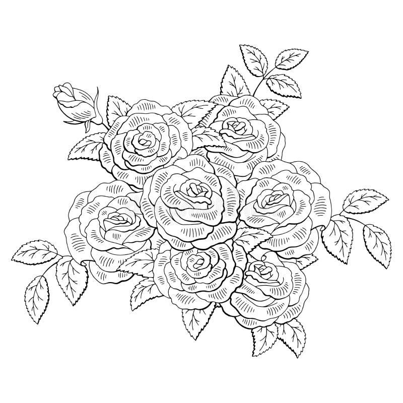 Le blanc noir graphique de fleur de Rose a isolé le vecteur d'illustration de croquis de bouquet illustration libre de droits