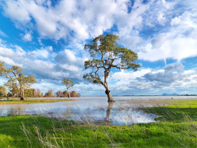 Le blanc opacifie le ciel bleu au-dessus du lac photo libre de droits