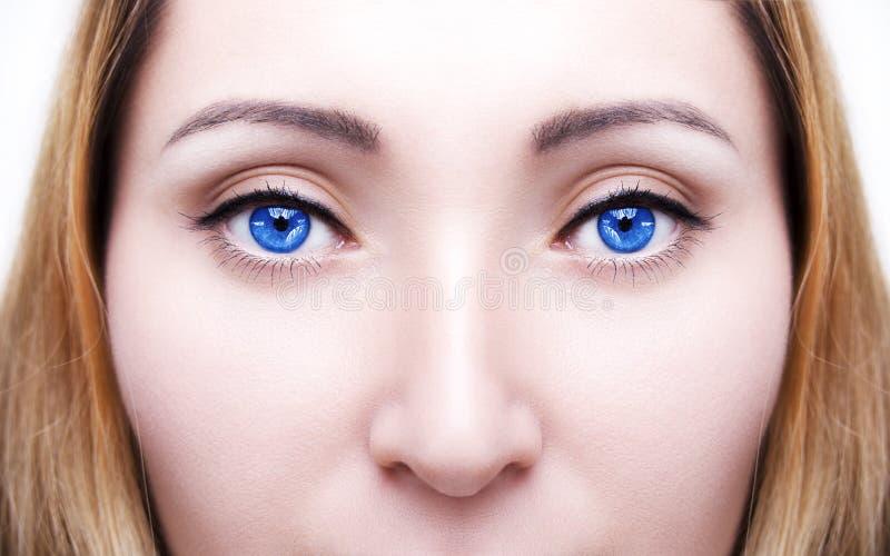 Le ` bleu s de femme de beau sembler perspicace observe photo stock