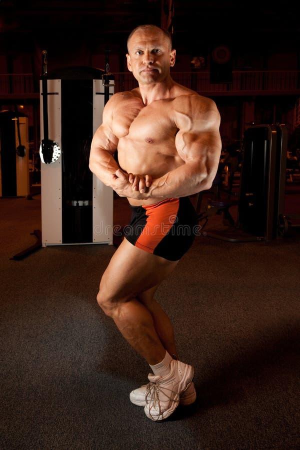 Le Bodybuilder explique ses muscles photos libres de droits