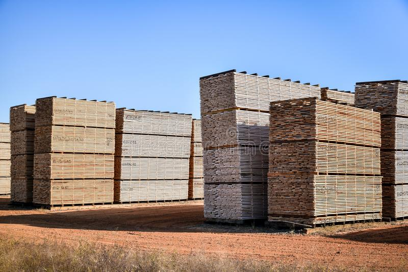 Le bois de charpente a empilé prêt à être embarqué aux clients image libre de droits