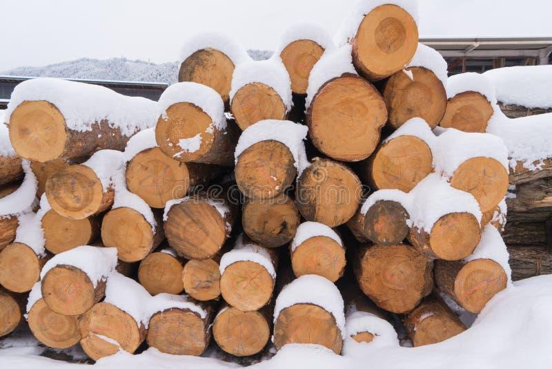 Le bois de chauffage couvert de neige empilée dans une pile pour allument photo libre de droits