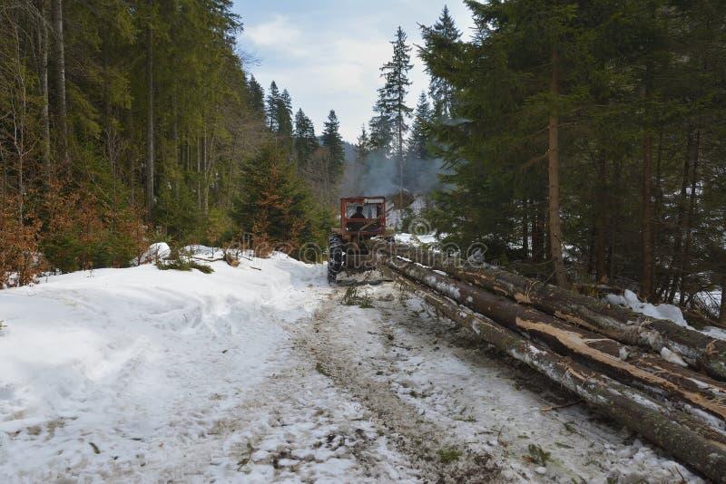 Le bois de construction/tracteur de ensabotage est les arbres coupés de ensabotage hors de la forêt photos libres de droits