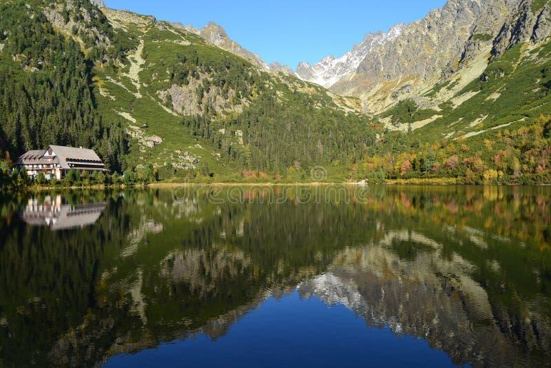 Le bois de parc de vert de ciel bleu de nature de montagne opacifie le réflexe de lac gentil images libres de droits