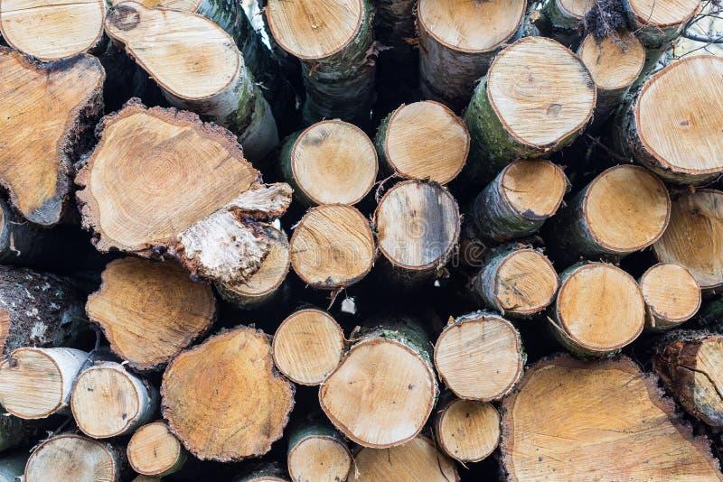 Le bois enregistre le fond photographie stock