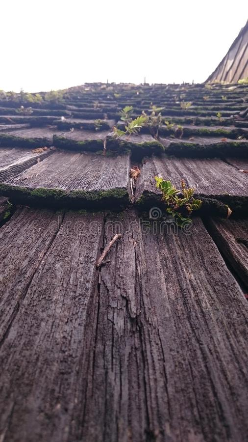 Le bois le plus ancien Toit image stock