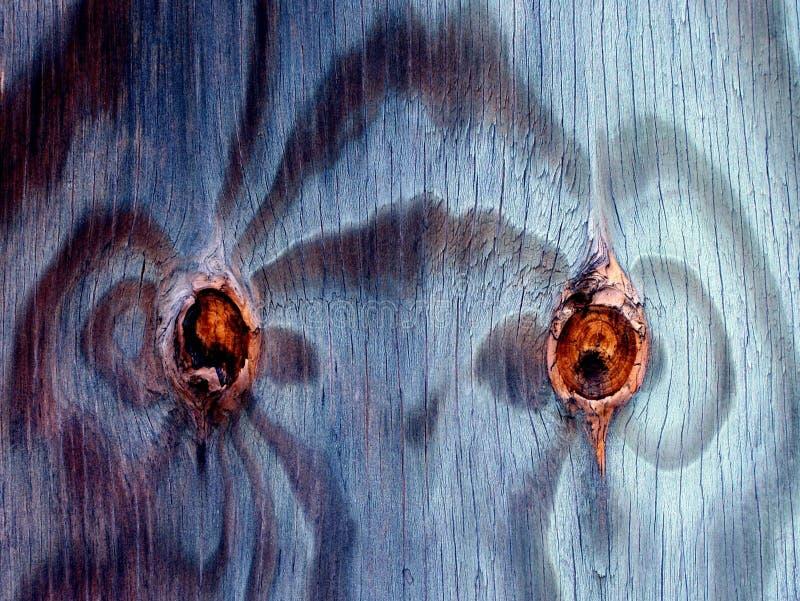 Le bois noue des yeux images stock