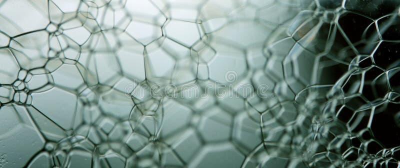 Le bolle si chiudono in su fotografia stock libera da diritti