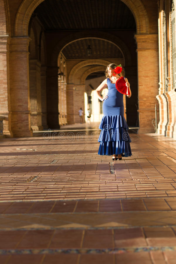 Le bonheur du soleil et du flamenco photos libres de droits