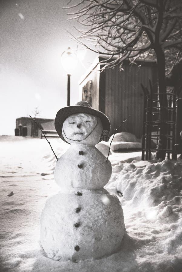 Le bonhomme de neige photos stock