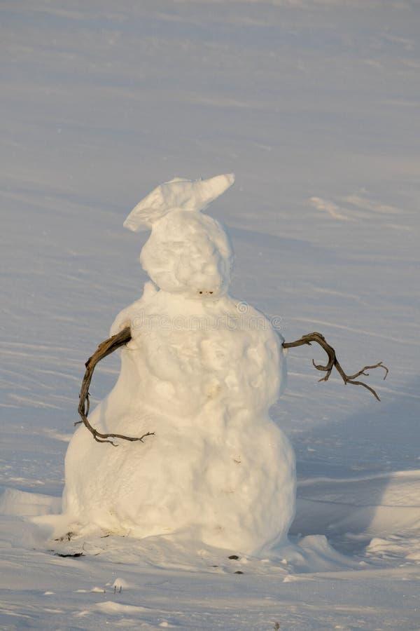 Le bonhomme de neige avec le bâton arme dans le pré ouvert dans Teton grand P national photos libres de droits