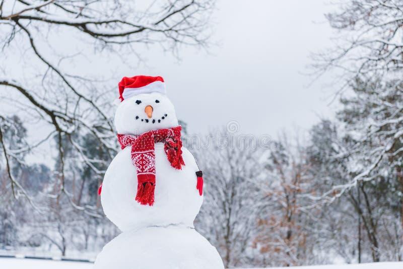 le bonhomme de neige drôle dans l'écharpe, les mitaines et le chapeau de Santa en hiver se garent photographie stock libre de droits