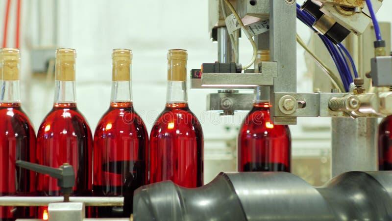 Le bottiglie dell'alcool rosso stanno passando il nastro trasportatore Capsule sulla bottiglia fotografia stock libera da diritti