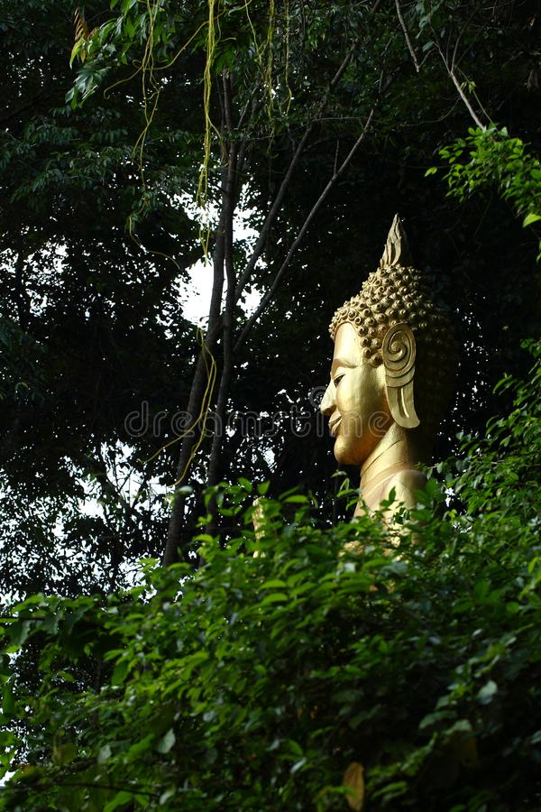 Le Bouddha dans les bois photo stock
