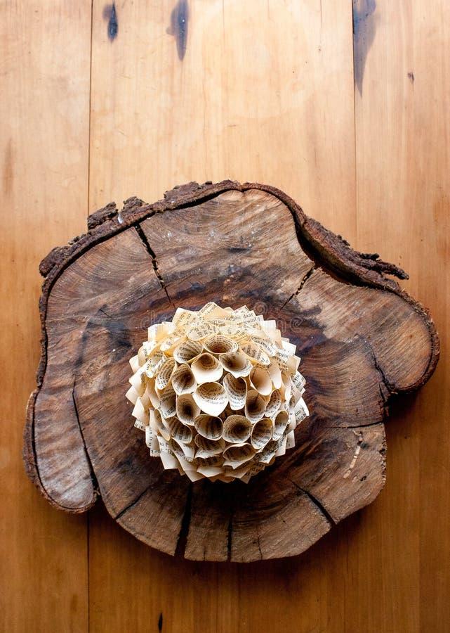 Le bouganvilla de papier de Flower photo libre de droits