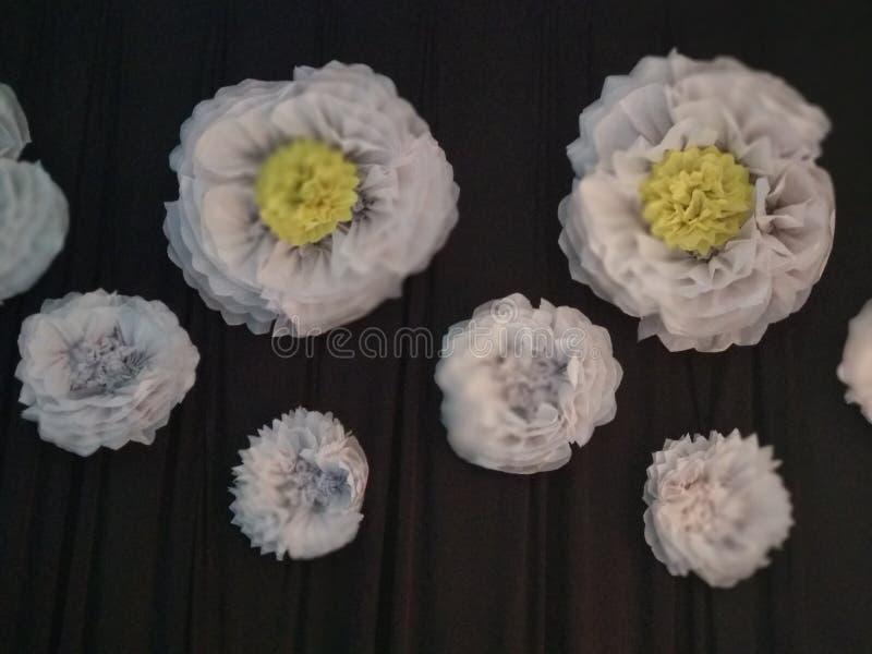 Le bouganvilla de papier de Flower images stock