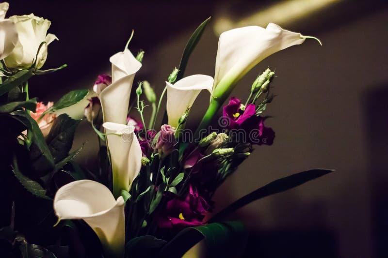 Le bouquet élégant des zantedeschias blancs et de l'Eustoma pourpre fleurit photos libres de droits