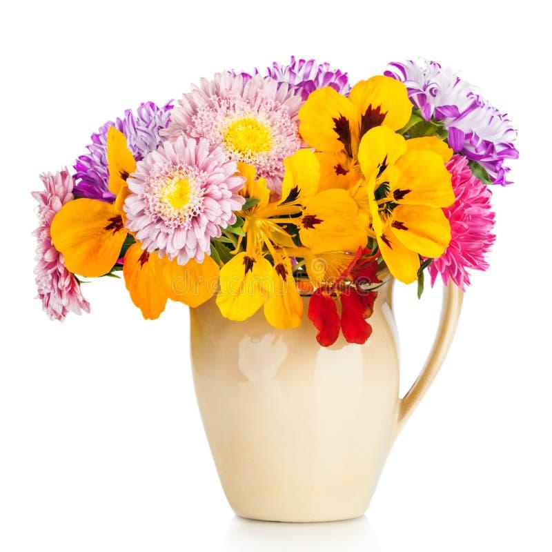 Le bouquet de l'aster fleurit dans le pot d'isolement sur le fond blanc photographie stock libre de droits