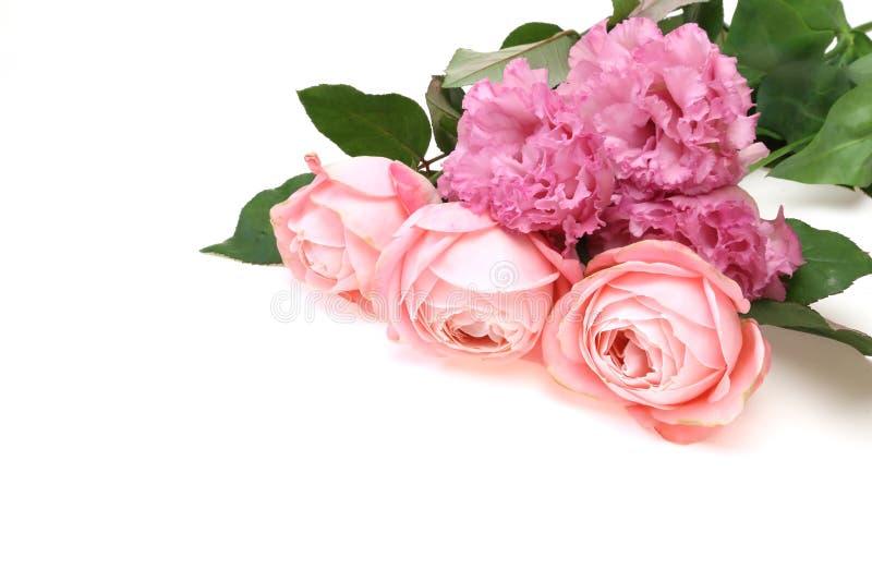 Le bouquet de l'eustoma et s'est levé photo libre de droits