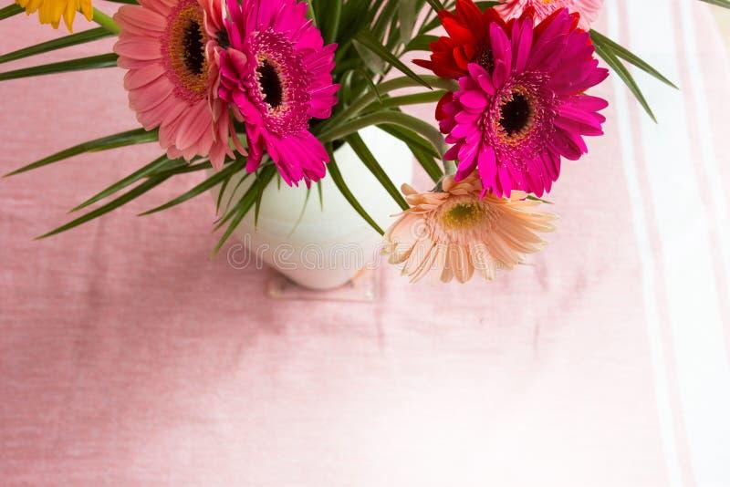 Le bouquet des marguerites roses dans le vase blanc sur le fond rose, les fleurs colorées regardent en haut photo libre de droits