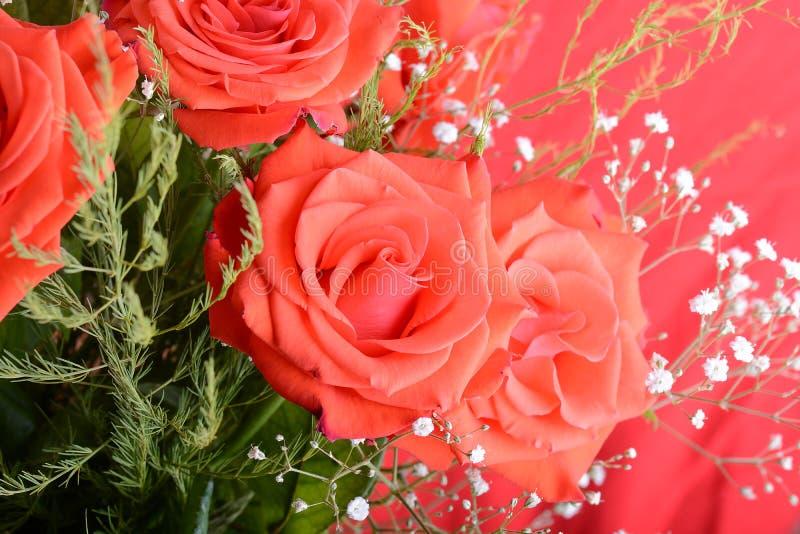 Le bouquet des roses rouge foncé de floraison dans le vase, se ferment vers le haut de la fleur photographie stock