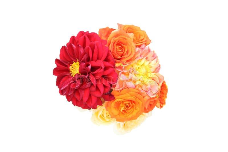 Le bouquet du dahlia et s'est levé à un arrière-plan blanc image libre de droits