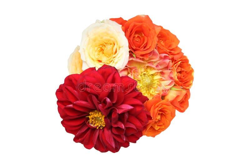 Le bouquet du dahlia et s'est levé à un arrière-plan blanc photographie stock
