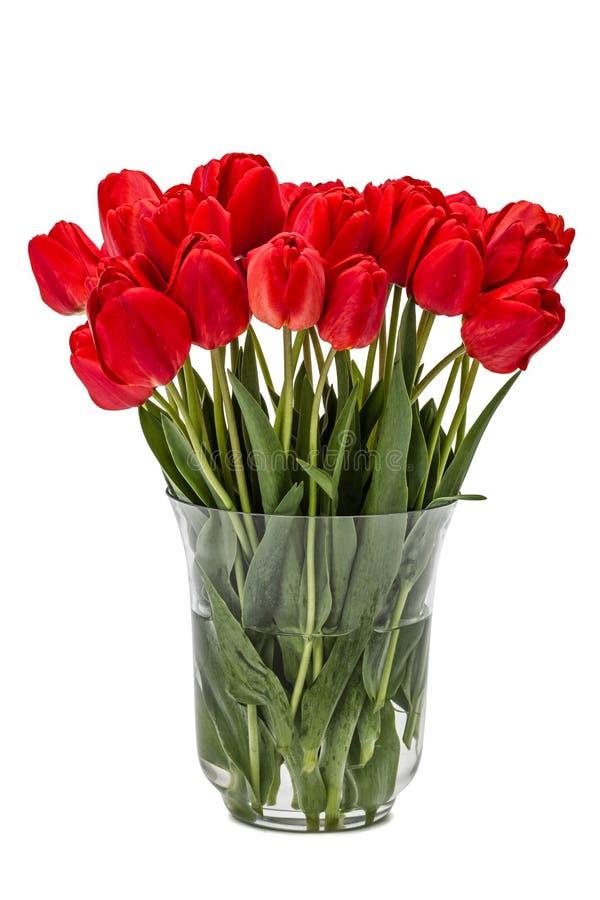 Le bouquet du rouge fleurit des tulipes dans le vase, d'isolement sur le backgro blanc image stock