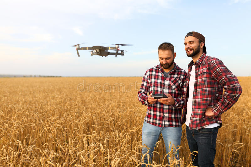 Le bourdon compact plane devant deux hommes de hippie Quadcopter vole près de la récolte l'explorant d'agriculteur et d'agronome  photos stock