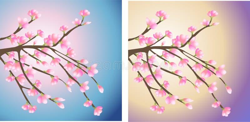 le branchement fleurit le rose illustration libre de droits