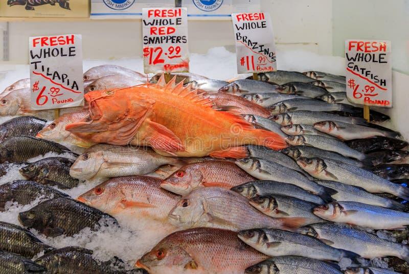 Le branzino, le tilapia, le poisson-chat et la cordelette de poisson frais sur la glace à vendre chez Pike placent le marché à Se photo stock