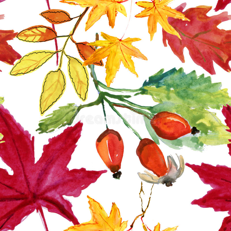 Le briar d'aquarelle modèle sans couture fleurit, de baie et de feuilles illustration stock