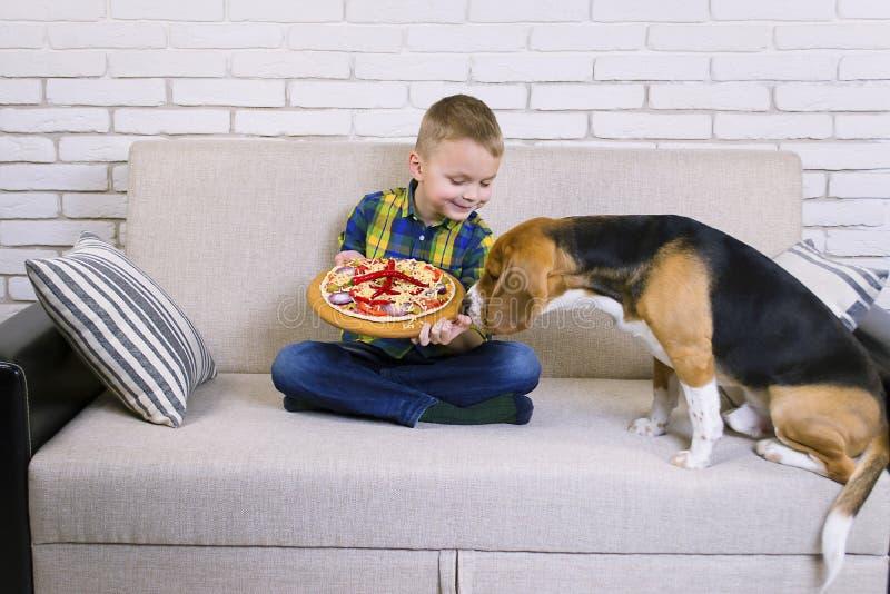 Le briquet drôle de garçon et de chien mangent de la pizza photos stock