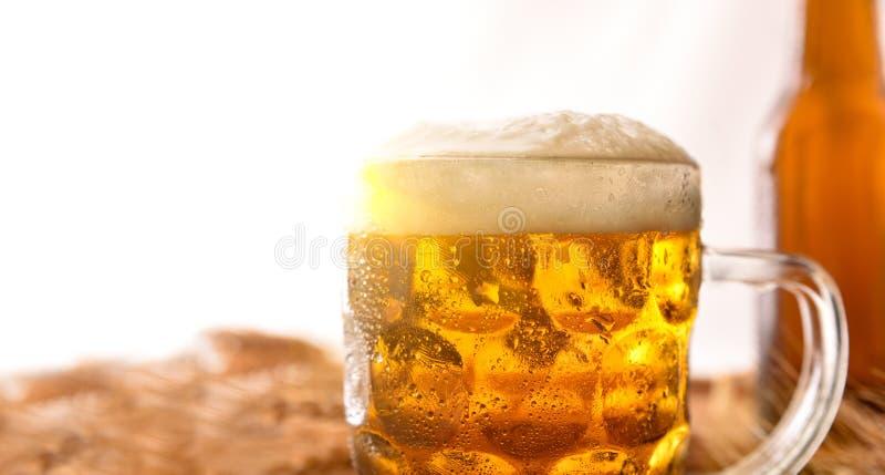 Le broc complètement de bière avec des oreilles d'orge détaillent le fond blanc images stock