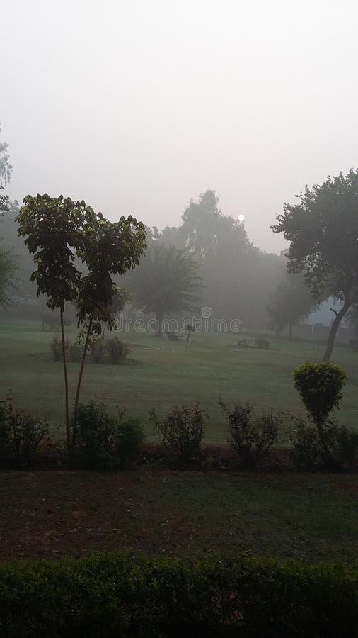 Le brouillard enfumé se fane puissance du soleil Un matin de Smogy de New Delhi photos libres de droits