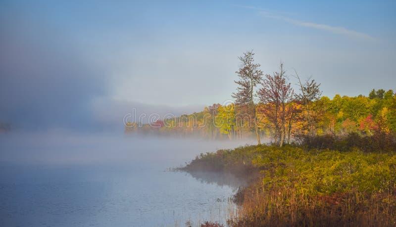 Le brouillard et la brume se lève tout autour d'un marais boisé de marécage, emballant avec le brouillard, un coloré, bord de mer images libres de droits