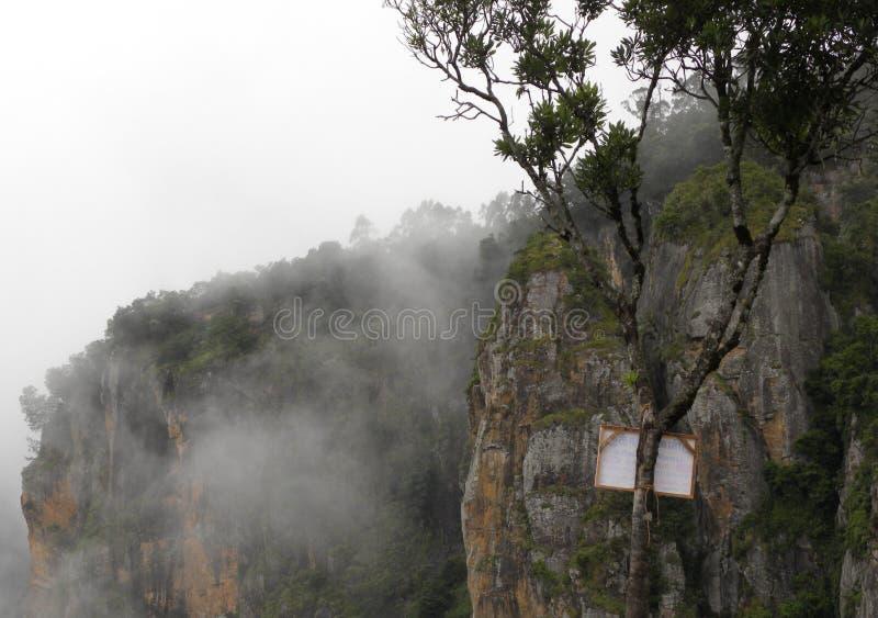 Le brouillard, la brume et le nuage ont couvert des montagnes et des arbres photo stock