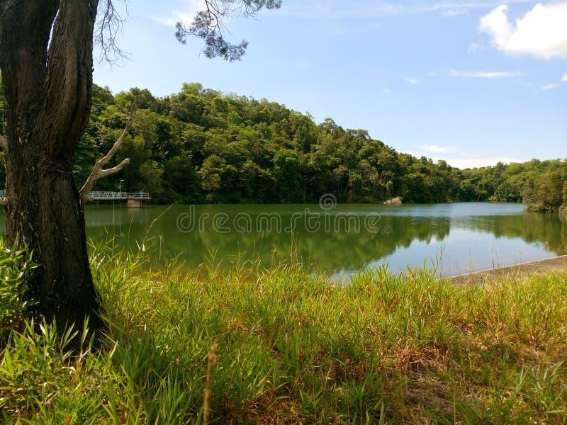 Le Brunei Tasek Lama Park photos libres de droits