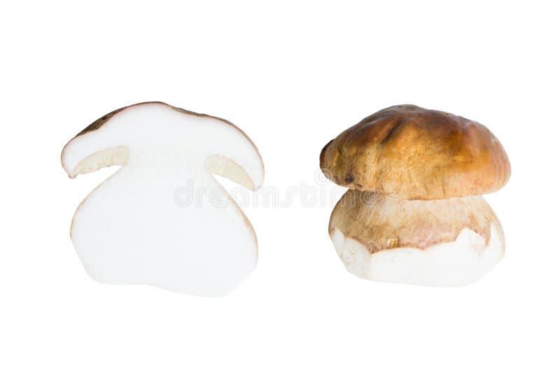 Le cèpe de champignon (boletus edulis) a coupé dans la moitié d'isolement sur le CCB blanc photographie stock libre de droits