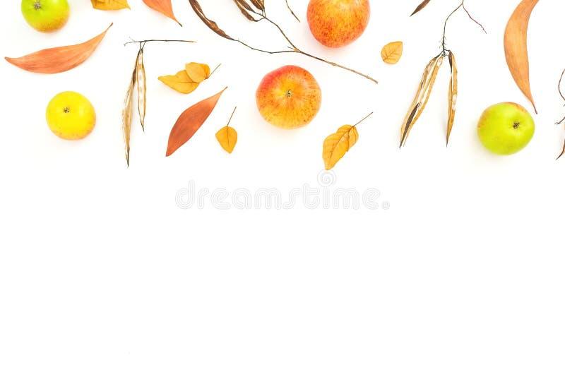 Le cadre d'automne avec la chute part, des fruits de pomme sur le fond blanc Configuration plate, vue sup?rieure Jour d'action de images stock