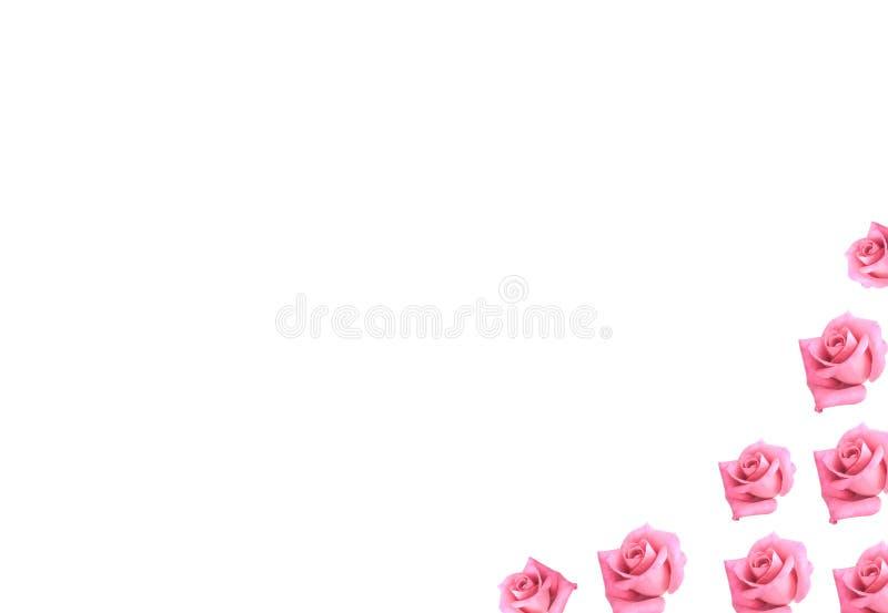 Download Le Cadre De Fond Fleurit Les Roses Roses Scrapbooking Photo stock - Image du valentines, fond: 8658162