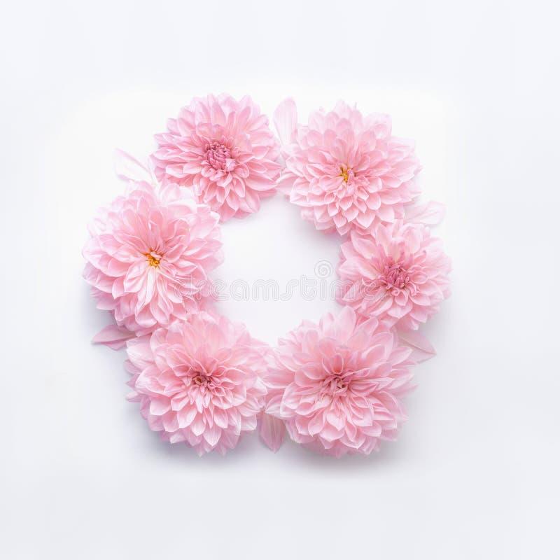 Le cadre rond du rose en pastel fleurit sur le fond blanc de bureau Guirlande florale Disposition pendant des vacances saluant photos libres de droits