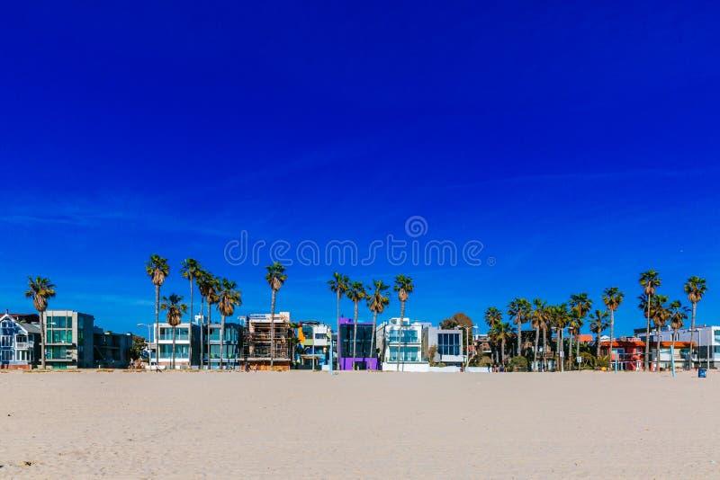 Le Camere e le palme vicino a Venezia tirano, Los Angeles fotografia stock libera da diritti