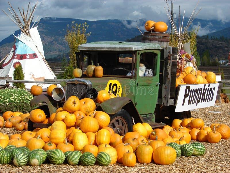 Le camion de potiron photo libre de droits