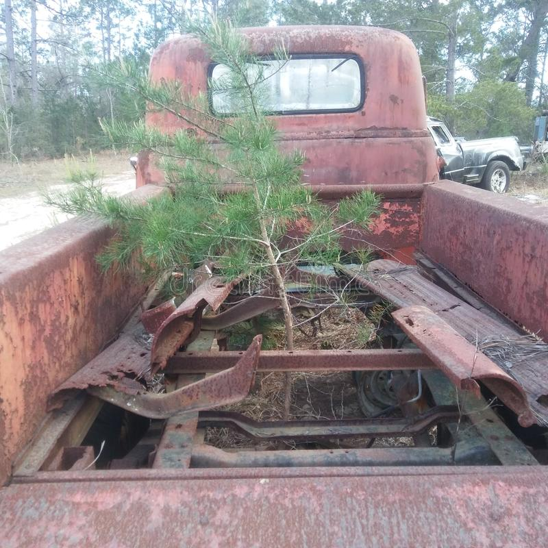 Le camion oublié qu'un arbre a trouvé images libres de droits