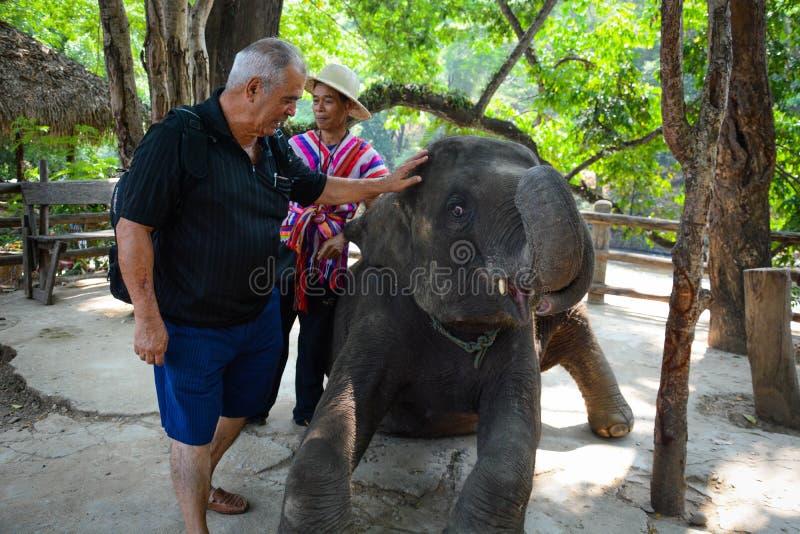 Le camp d'?l?phant de Maetaman en Chiang Mai, Tha?lande photographie stock libre de droits