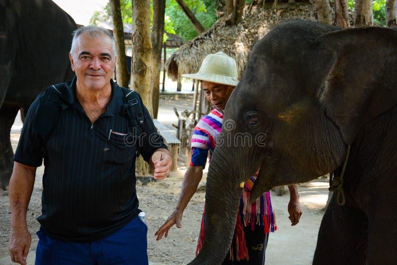 Le camp d'?l?phant de Maetaman en Chiang Mai, Tha?lande image libre de droits