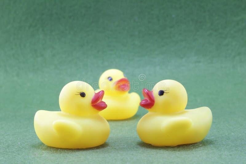 Le canard en caoutchouc jaune images libres de droits