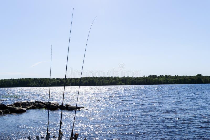 Le canne da pesca profilano durante il tramonto Canna da pesca contro l'oceano al tramonto Canna da pesca in un crogiolo di acqua fotografie stock libere da diritti